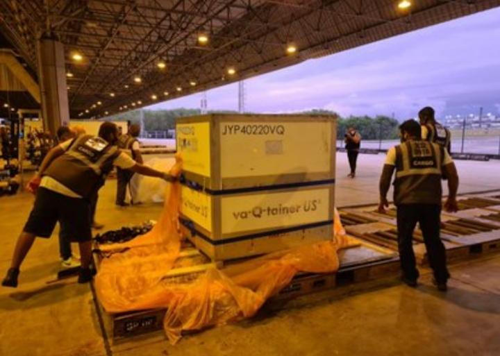 Brasil recebe primeiro lote de insumos da vacina Oxford/'AstraZeneca