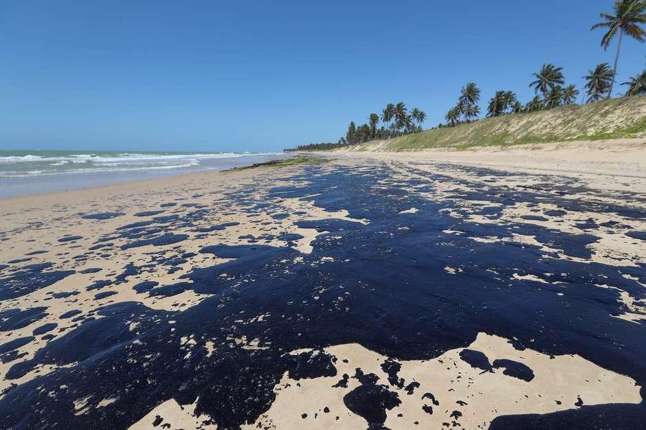 Mais de 200 toneladas de óleo já foram retiradas das praias do Nordeste