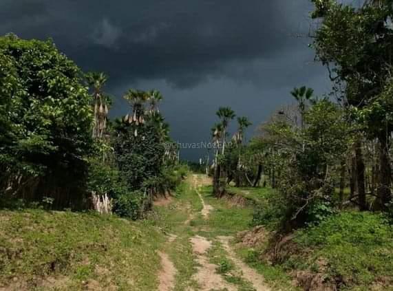 Funceme indica 45% de probabilidade de chuvas acima da média entre fevereiro e abril no Ceará