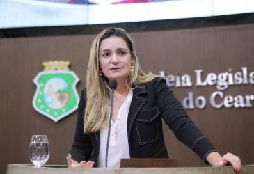 Assembleia Legisltiva promove reunião de trabalho para discutir limites entre Ceará e Piauí