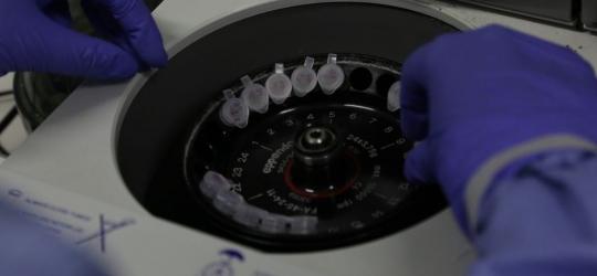 Mais de 300 casos de coronavírus já foram confirmados no Ceará